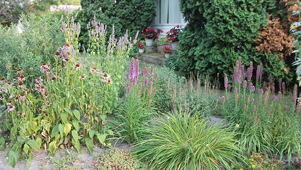 Lisa Erickson, 223 State Street West, Grygla, has been nominated for 'Yard of the Week' but due to the nature of her yard, we're diving in a little deeper this week and going to discuss pollinator friendly gardening below! Photos by Grygla Eagle Newspaper